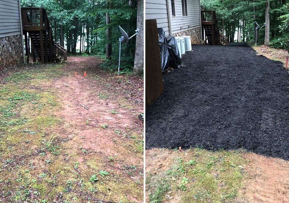 Wow…See The Difference Mulch Makes